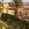 Viewing Bryce Canyon National Park
