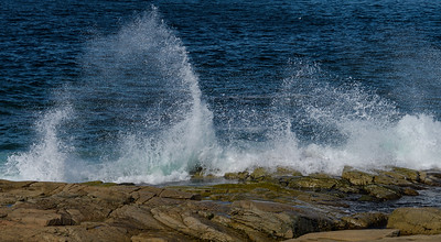 On the Rocky Coast - Joe Batt's Arm - Fogo Island