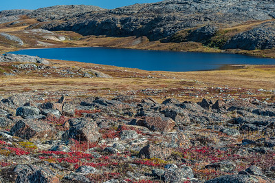 Colors of the Tundra Landscape