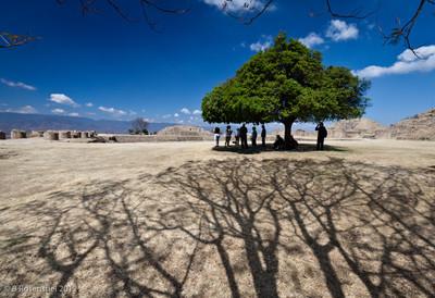 Monte Alban, Oaxaca, Mexico, Dry Season, 2012