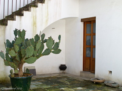 Black Pot Courtyard, Oaxaca, MX, 2010