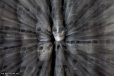 Smiling Skulls Still Life, San Bartolo Coyotopec, MX, 2010