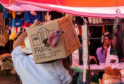 Boxed Turkey, Sunday Market, Tlacolula, Mexico, 2005