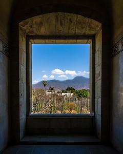 Botanic Garden, Oaxaca, Mexico, 2020