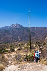Hierve el Agua, Oaxaca, Mexico, 2020