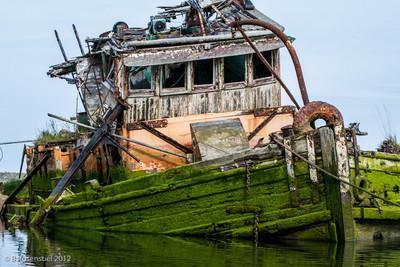 Mary Hume Shipwreck, Gold Beach, Oregon, May, 2012