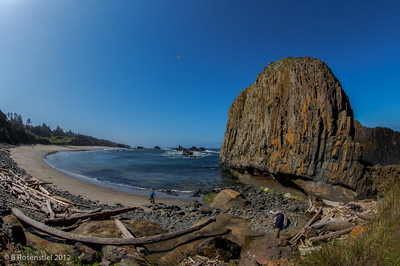 Seal Rocks, Oregon, May, 2012