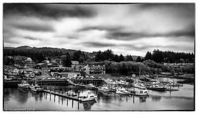 Aquina Head, Oregon, May, 2012