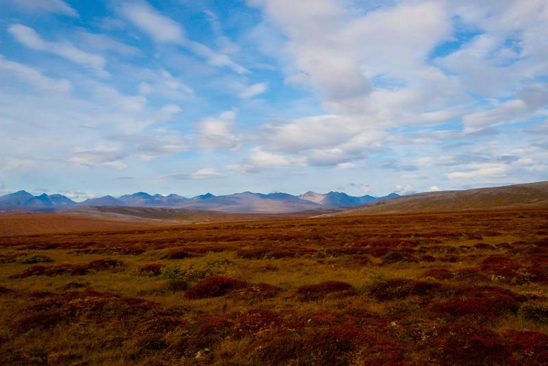 Tundra outside Nome