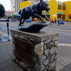 Statue of Balto on 4th Street | Anchorage