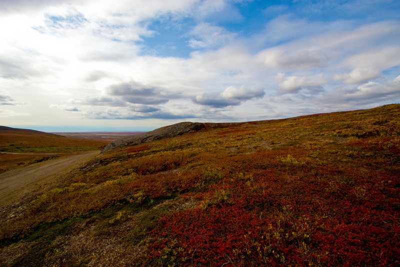 Up Glacier Creek Road | Nome