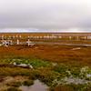 Cemetery out on the tundra | Barrow