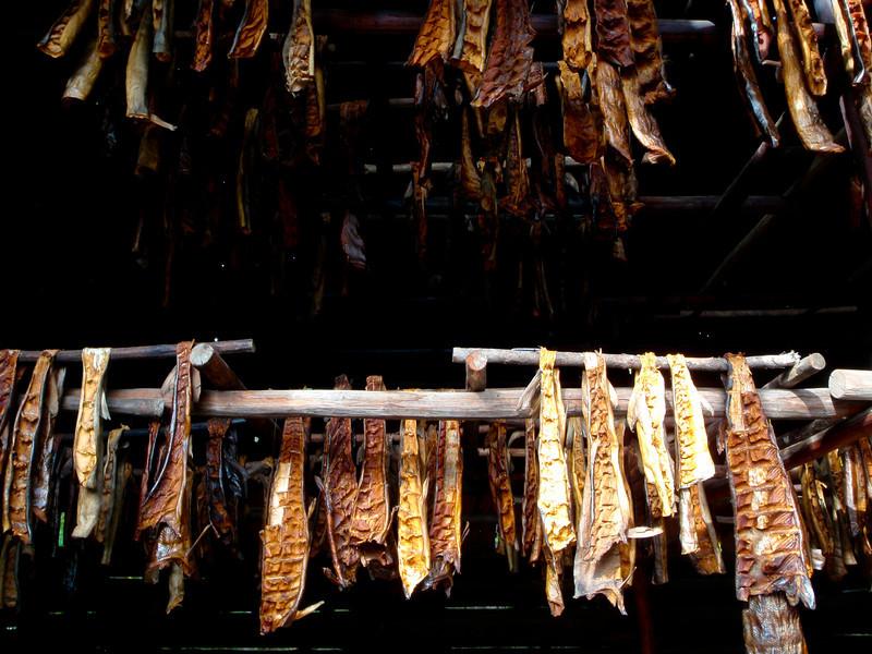 Dried Salmon | Fairbanks