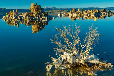 Icy Morning on Mono Lake