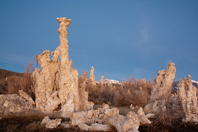 Tufas in the early morning light. Mono Lake, CA