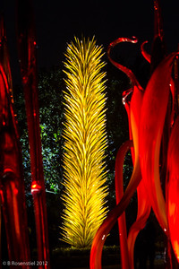 Chihuly at Night, Dallas Arboretum, TX, 2012