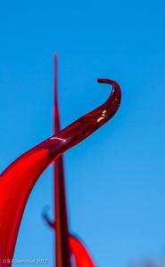 """""""Reeds"""", Chihuly Exhibit, Dallas Arboretum, TX, 2012"""
