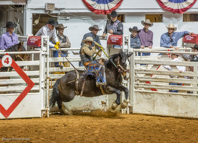 Rodeo, Ft Worth, Texas, 2013