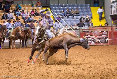Championship Rodeo, Stockyards, Fort Worth, Texas, 2013