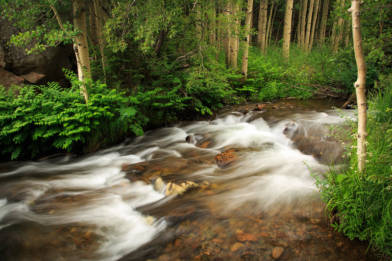 Dream Lake Trail