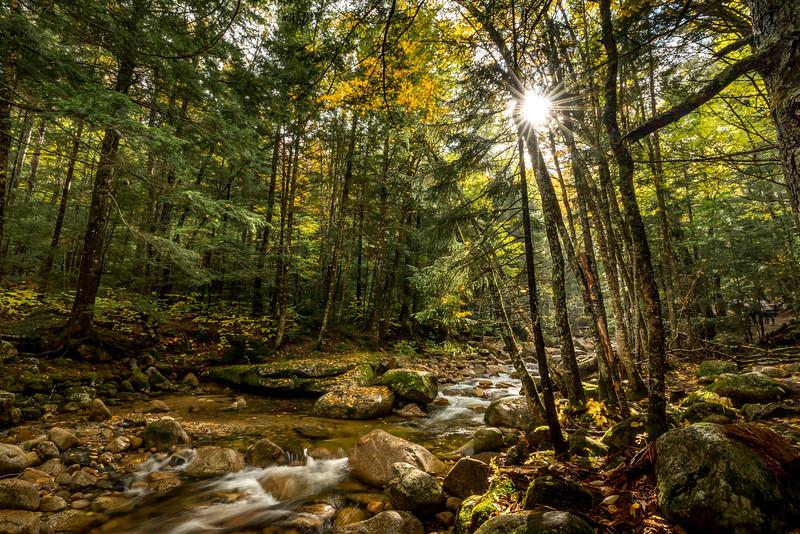 Somewhere in Vermont