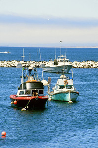 Boats moored in Monterey Bay.