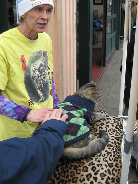 Cat shelter soliciting support and adoptions at Pike Place Market
