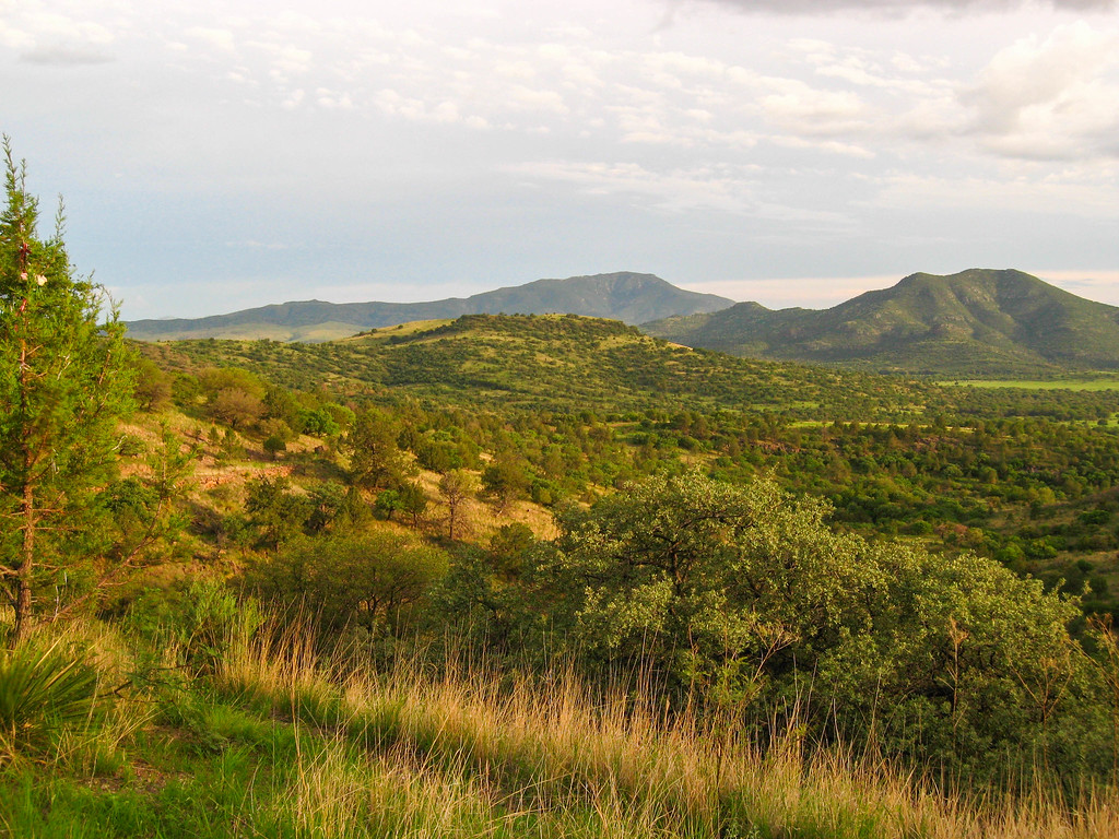 Driving the Davis Mountains scenic loop highway