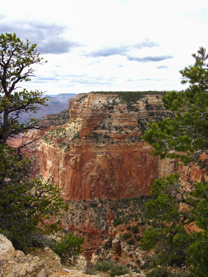 Walhalla Overlook, North Rim, Grand Canyon National Park.