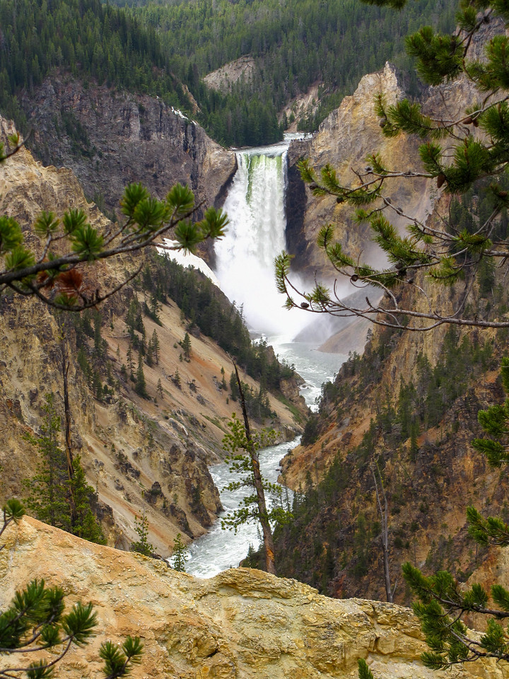 The lower falls of the Yellowstone River, Yellowstone National Park.