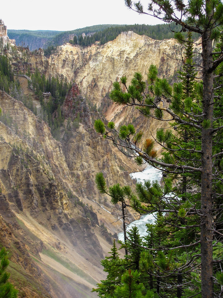 Grand Canyon of the Yellowstone, Yellowstone National Park.