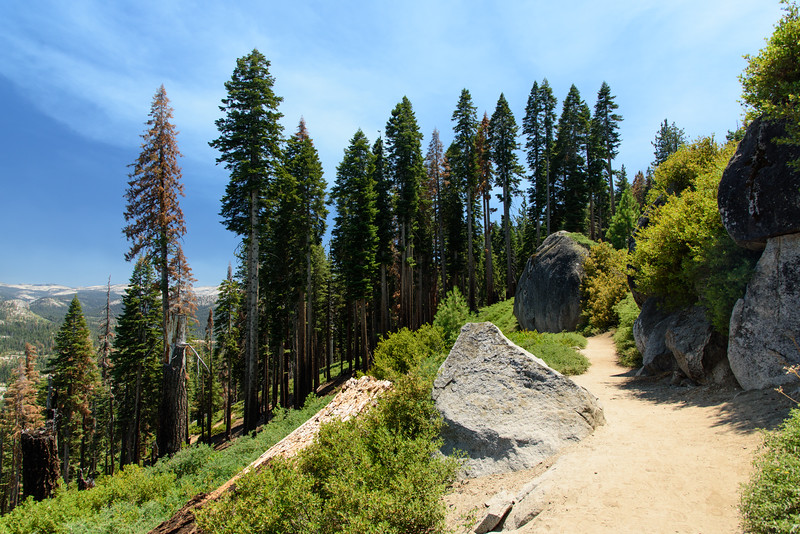 Panorama Trail