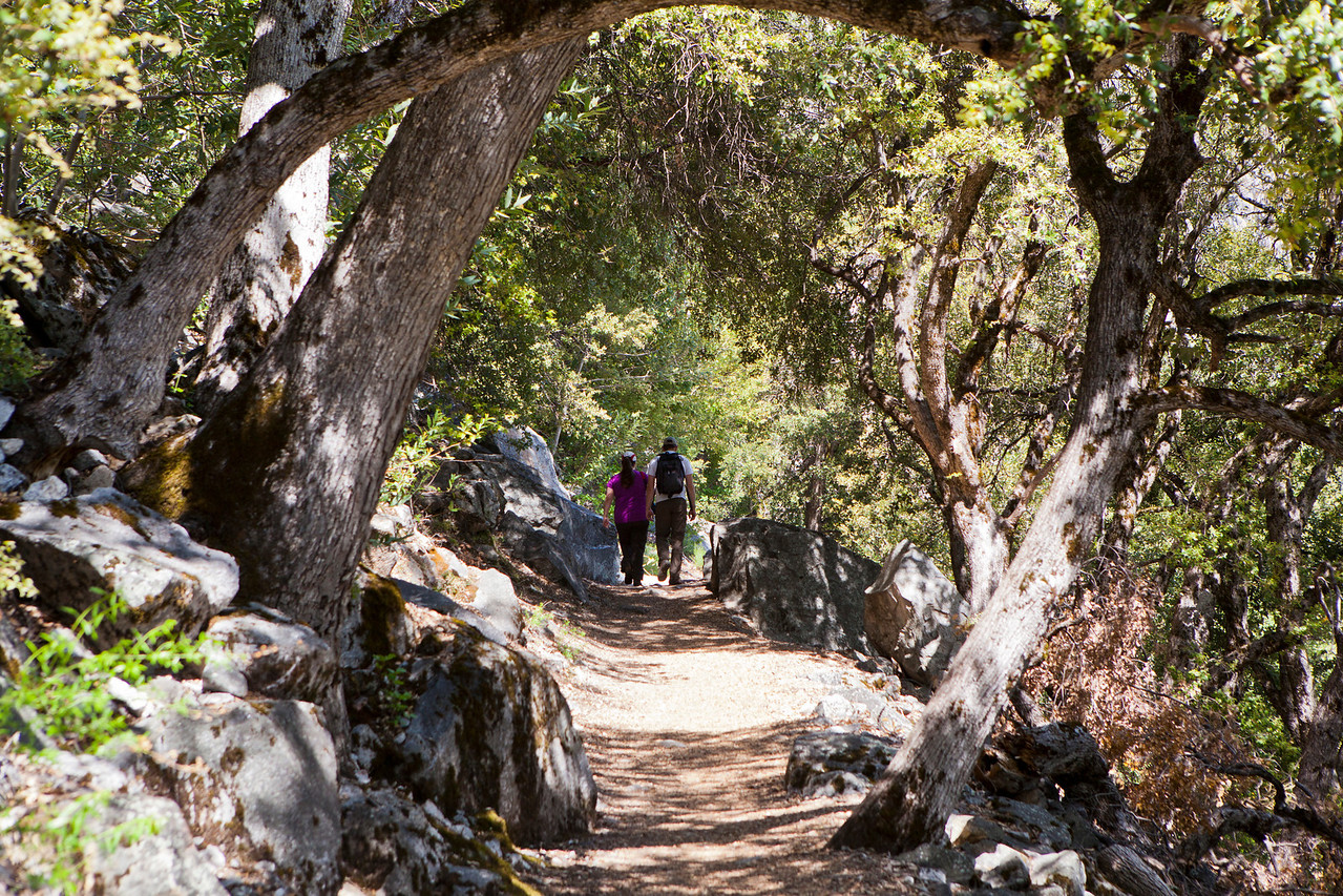 Liz and Will.<br /> Hetch Hetchy Hike
