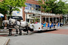 Horse and Buggy ride in Historic Downtown Wilmington