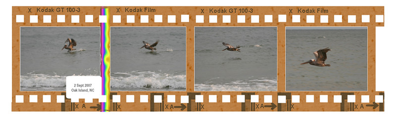 00aFavorite 20070902 (1920) IMG_8425, 8426, 8427, 8428 [4-frame filmstrip]