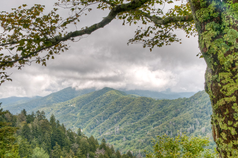 • Photos taken on the way to Gatlinburg from Cherokee