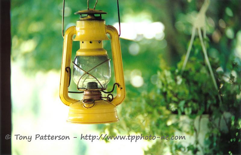 """Yellow Lantern""<br /> Yancey County, NC"