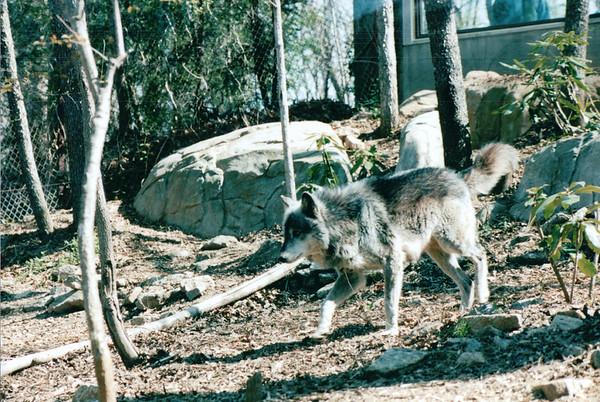Asheville, NC - Western NC Nature Center
