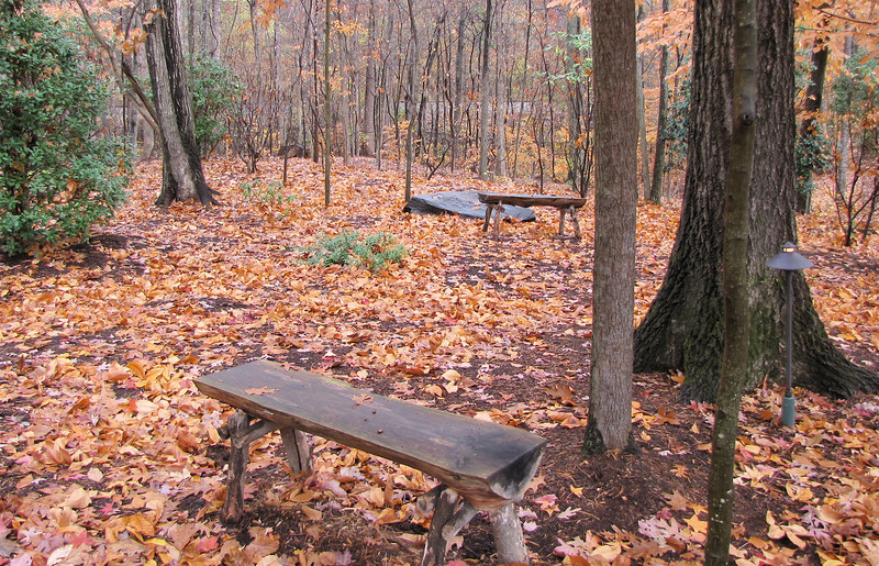 Woodland Meditation Area - Billy Graham Library - Charlotte, NC  11-26-10