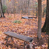 Woodland Meditation Area - Billy Graham Library - Charlotte, NC  11-26-10