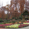 Beautiful Grounds - Billy Graham Library - Charlotte, NC  11-26-10