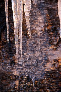 Ice Cycles on Rock in Morning Light