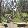 Lots of Peaceful Spots to Sit - The Botanical Gardens at Asheville, NC  4-9-09