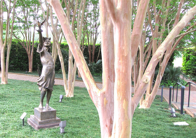 Another Child of Peace by Gary Lee Price in Bronze - Daniel Stowe Botanical Garden - Belmont, NC  5-12-12<br /> The beautiful trunks are of crape myrtles.  Absolutely lovely!