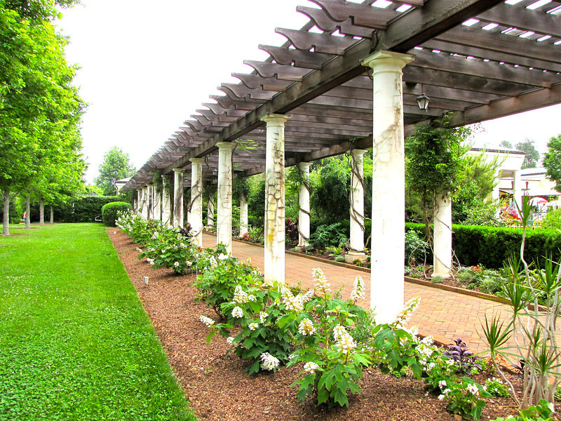 Pergola on West Side of Visitors Center - Daniel Stowe Botanical Garden - Belmont, NC  5-12-12