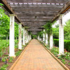 Long Pergola on West Side of Visitors Center - Daniel Stowe Botanical Garden - Belmont, NC  5-12-12