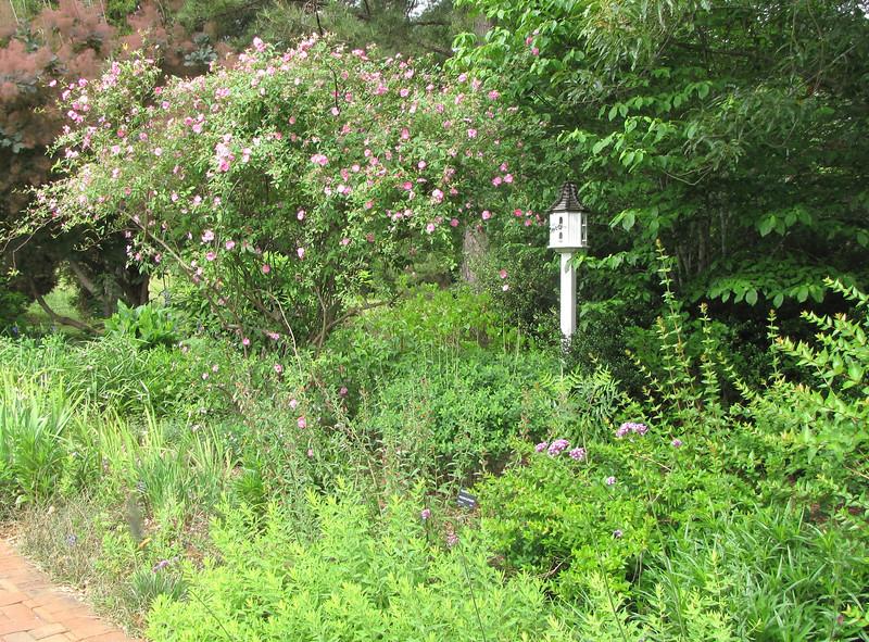 Cozy Place For a Birdhouse - Daniel Stowe Botanical Garden - Belmont, NC  5-12-12