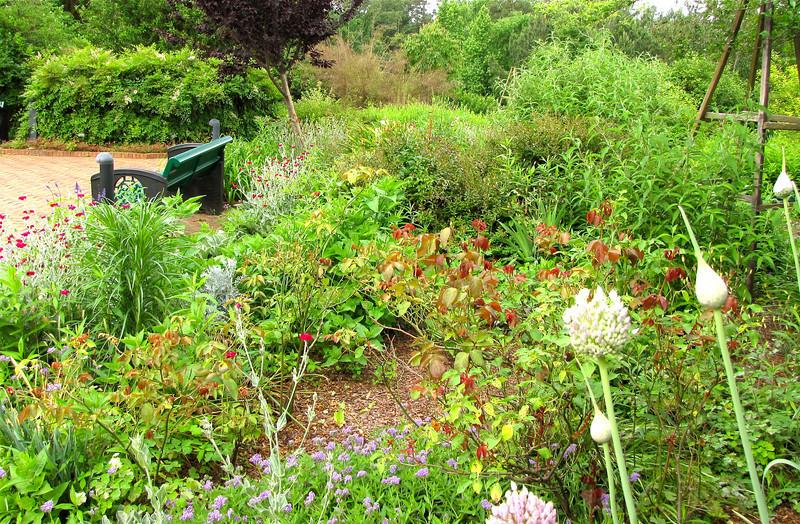 Lush Dense Gardens - Just the Kind We Like - Daniel Stowe Botanical Garden - Belmont, NC  5-12-12