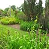 Daniel Stowe Botanical Garden - Belmont, NC  5-12-12