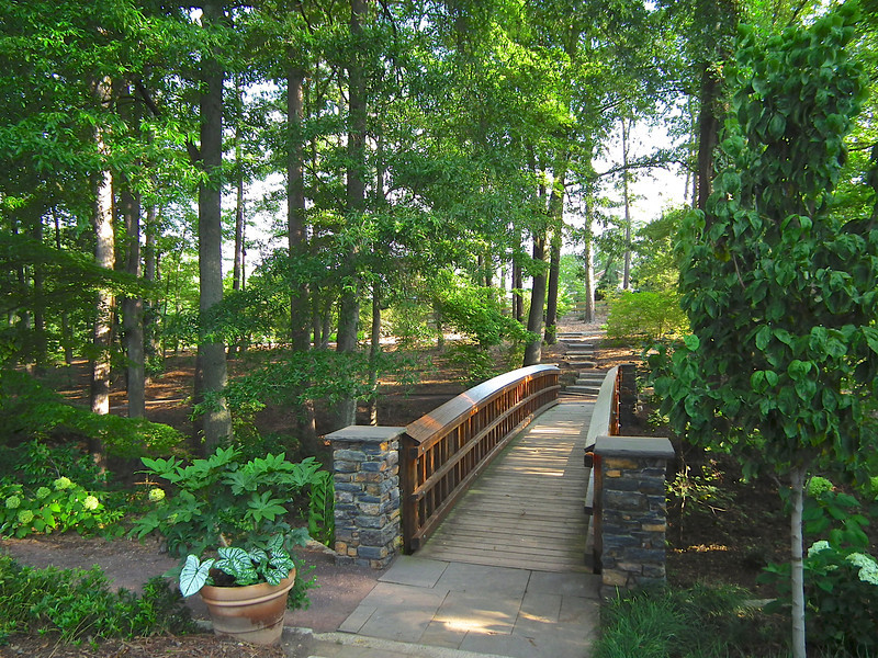 Beautiful Bridge in Spring Woodland Garden - Sarah P. Duke Gardens - Durham, NC<br /> In Doris Duke Gardens area.